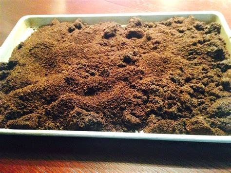 When deciding whether or not your plants would like the remains of your morning coffee, consider your overall climate. Leftover Coffee Grounds | Uses for coffee grounds, Container gardening, Organic gardening