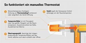 Heizkörper Funktioniert Nicht : manuelles thermostat antworten auf die 7 h ufigsten fragen ~ Frokenaadalensverden.com Haus und Dekorationen