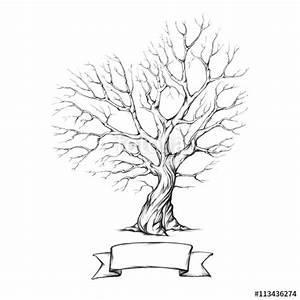 Kleiner Baum Mit Breiter Krone : baum mit herzf rmiger krone stockfotos und lizenzfreie ~ Michelbontemps.com Haus und Dekorationen