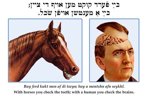 check jewish yiddish teeth iq idioms quotes wit quickly horses visit