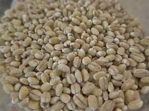 Baby U2019s Barley Cereal
