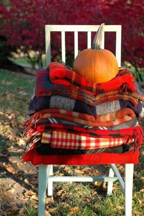 fall wool blankets pictures   images