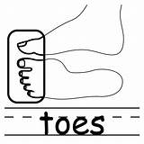 Toes Clipart Clip Elbow Coloring Words Cliparts Basic Face Toe Cartoon Human Labeled Abcteach Panda Library Neck Presentations Websites Reports sketch template