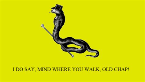 Don T Tread On Me Memes - mind where you walk gadsden flag don t tread on me know your meme