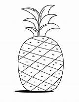 Pineapple Coloring Drawing Fruits Pages Learn Printable Drawings Word Colornimbus Crafts Summer Colors Preschool sketch template
