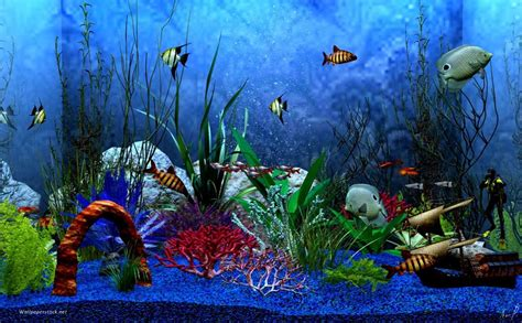Animated Wallpapers For Windows 7 32 Bit Free - 3d fish tank screensaver windows 7 free