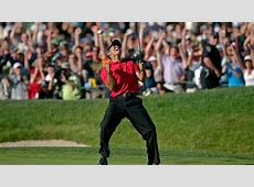 Jesper Parnevik Tiger Woods used 'The Force' to make '08