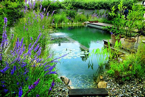 Swimming Pond : Natural Landscaping, Gardening