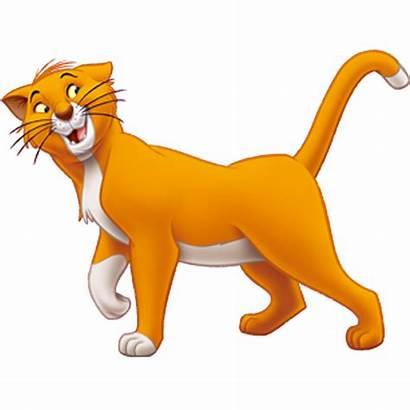 Aristocats Disney Malley Thomas Cat Walt Imagens