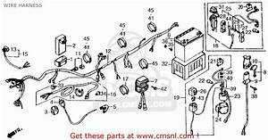 1985 Honda Cmx250c Ignition Switch Wiring Diagram