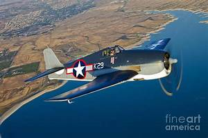 A Grumman F6f Hellcat Fighter Plane Photograph by Scott