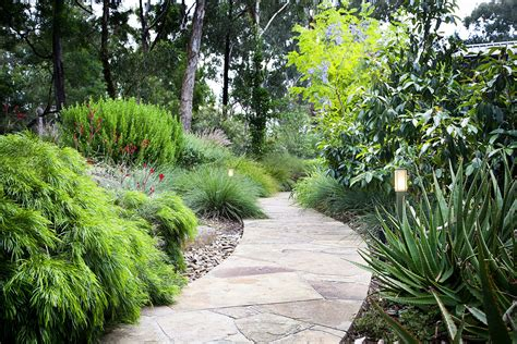 landscaping garden tlc design landscape design melbourne pool design melbourne landscape construction melbourne