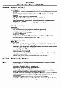 excel vba developer resume samples velvet jobs With excel resume template