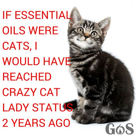 If Essential Oils Were Cats, I Would Be A Crazy Cat Lady
