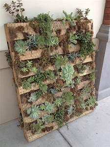 Mur Végétal En Palette : mur v g tal conseils et photos inspirantes pour le cr er ~ Melissatoandfro.com Idées de Décoration