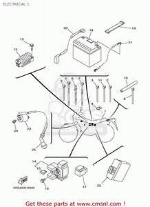 Yamaha Tw 125 Wiring Diagram