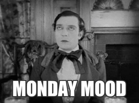 mondaymood gifs find share  giphy