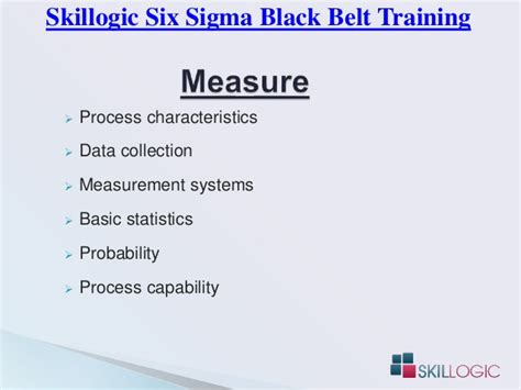 Six Sigma Black Belt Training Syllabus By Skillogic Calvin Klein Belted Wool Coat Car Belt Dressing Spray Hoover Style 20 Turntable Belts And Needles Carhartt Buckle Ferragamo Store Concealed Money Bissell 6594 W