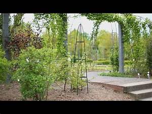 Clematis Rankhilfe Selber Bauen : garten obelisk rankhilfe youtube ~ Orissabook.com Haus und Dekorationen