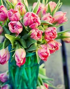 Bouquet De Printemps : bouquets de printemps narcisse jacinthe et tulipe ~ Melissatoandfro.com Idées de Décoration