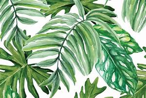 Tropical Paint - Cara Saven Wall Design - carasaven.com