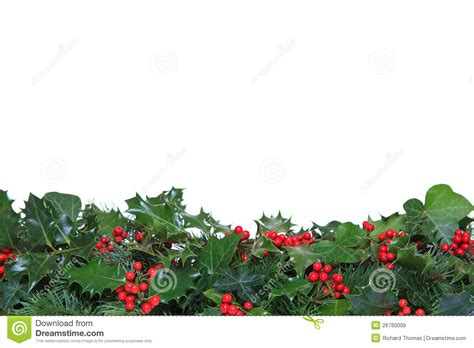 holly  ivy footer stock image image  christmas