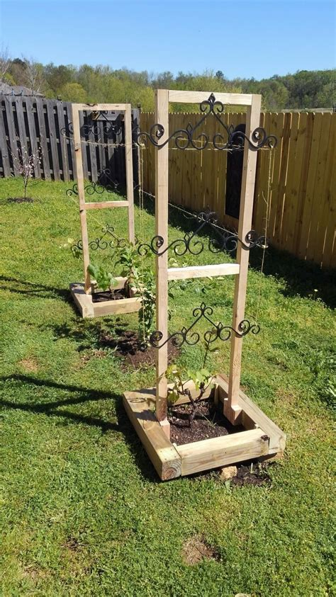 Grape Vine Trellis Ryobi Nation Projects