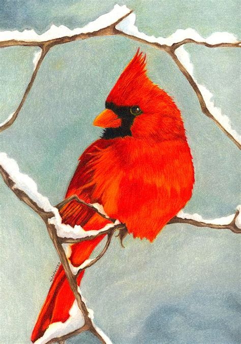 Red Cardinal Winter Painting Ideas Pinterest