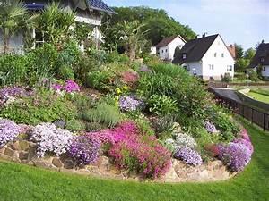 Die Schönsten Steingärten : palmen und co mein garten im fr hjahr achtung 13 bilder ~ Bigdaddyawards.com Haus und Dekorationen