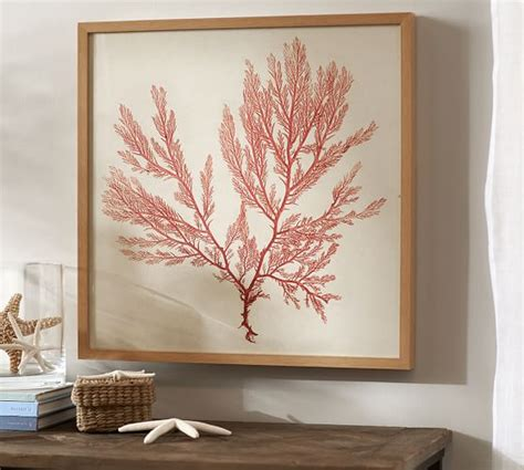 pottery barn prints framed coral prints pottery barn
