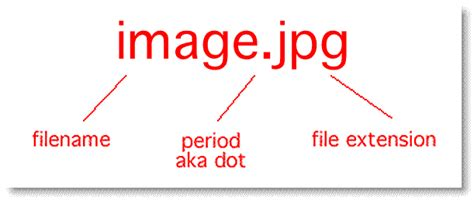 What Is The Best File Format For A Resume by Picture File Formats And Extensions
