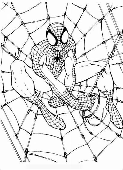 Spiderman Pages Colouring Template Templates Printable