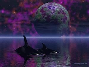 Free 3D Wallpaper 'Orcas' Dream' 1024x768