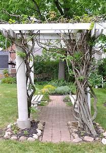 wisteria arbor in Parkside area of Buffalo NY - Buffalo ...