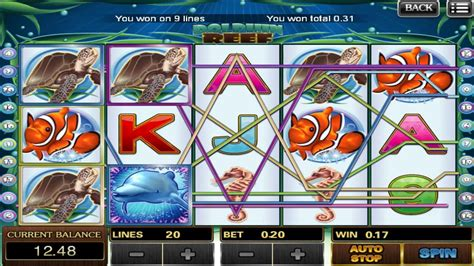 big win  dolphin reef  slot game scr