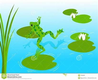 Pond Frog Clipart Clip Nymphaeaceae Vector Cartoon