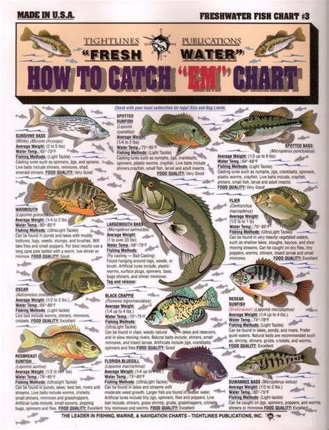 images  fishing  pinterest bass lures
