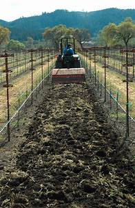 Farms  Vineyards And Groves Reap Compost U2019s Benefits