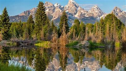 Forest Mountain Nature Landscape Water Lake Clouds