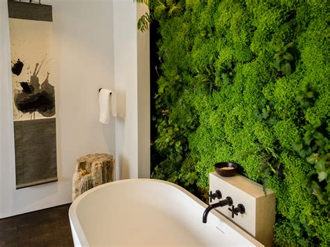 Bathroom Ideas For Walls by Bathroom Color And Paint Ideas Pictures Tips From Hgtv