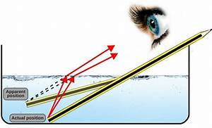 Why Is It So Difficult To See Underwater? » Science ABC
