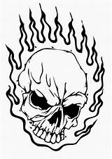 Skull Coloring Pages Printable Filminspector sketch template