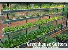 How to Grow Your Own Food – 582013 Garden Tally One