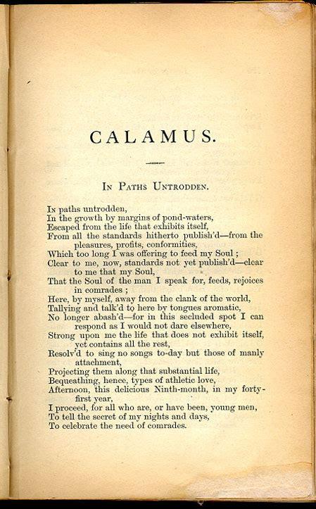 calamus leaves  grass   walt whitman archive