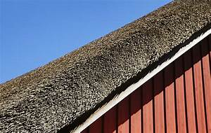 stunning prix toit de chaume ideas joshkrajcikus With la maison de l artisan 6 lentretien dun toit en chaume toutes les infos et conseils
