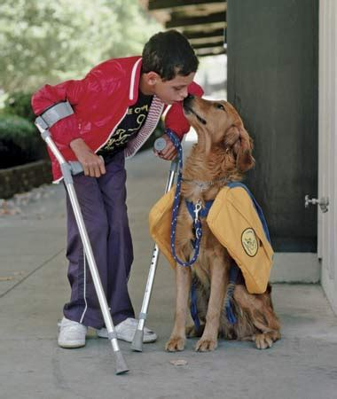 how do animals help humans service animals help humans live fuller lives advocacy for animals