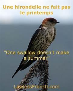 Une Hirondelle Fait Le Printemps : une hirondelle ne fait pas le printemps french proverb ~ Melissatoandfro.com Idées de Décoration