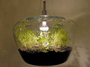for A suspended glass greenhouse