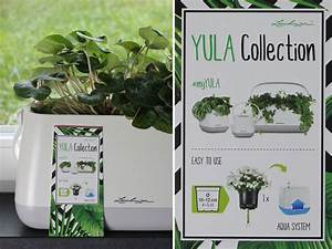 Lechuza Bewässerungssystem Anleitung : plotterfreebie orchideenbl te und yula pflanzgef e ~ Eleganceandgraceweddings.com Haus und Dekorationen