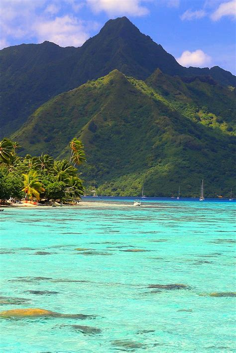 Best 25 Moorea Tahiti Ideas On Pinterest Moorea Island